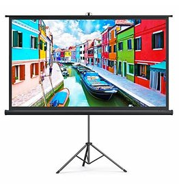Projector Screen with Stand, TaoTronics Indoor Outdoor Projection Screen 4K HD 100 Inch 16:9 with Premium Wrinkle-Free Design (Easy to Clean, 1.1 Gain, 160degree Viewing Angle & Includes a Carry Bag) (Renewed)