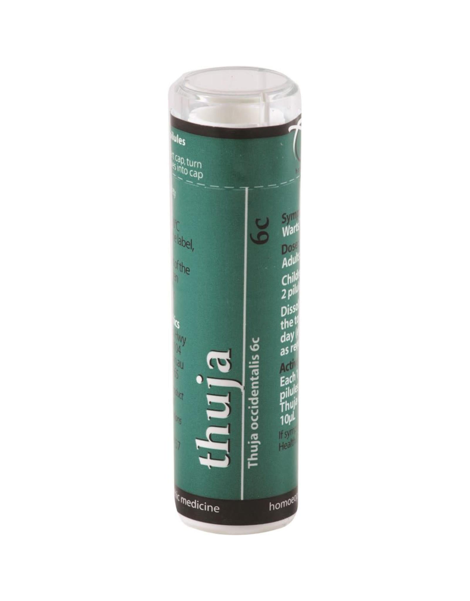 Wildcraft Dispensary Thuja 6c