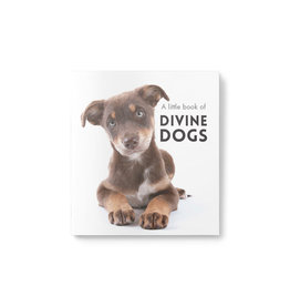 Little Book of Divine Dogs