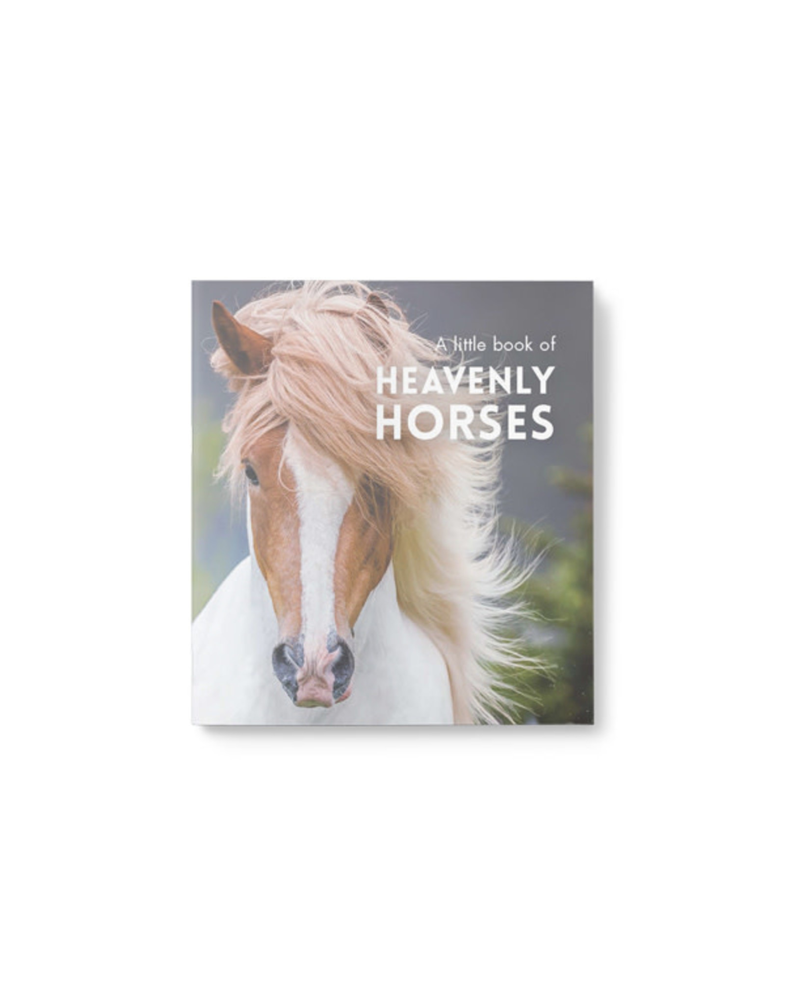 Little Book of Heavenly Horses