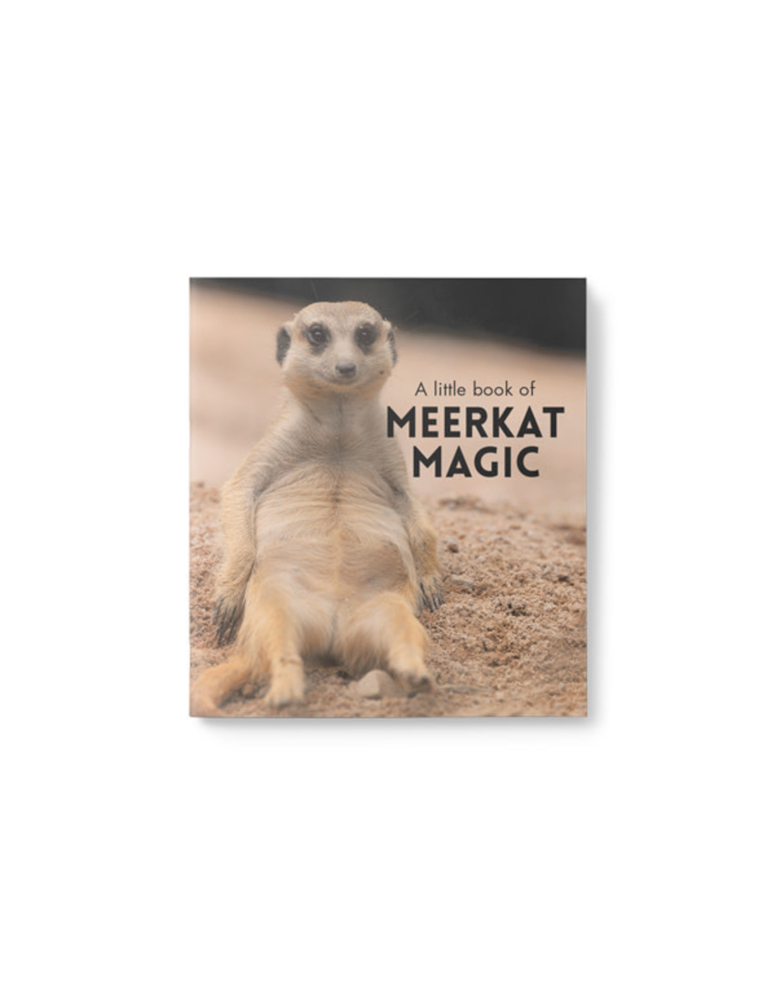 Little Book of Meerkat Magic