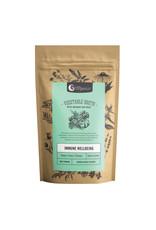 NutraOrganics Vegetable Broth - Garden Veggie 100g