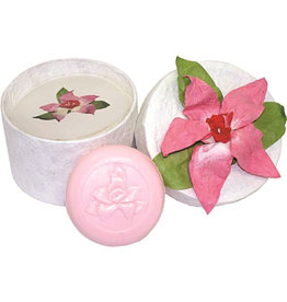 Clover Fields Hibiscus Pamper Pack - Bath Salts and Soap