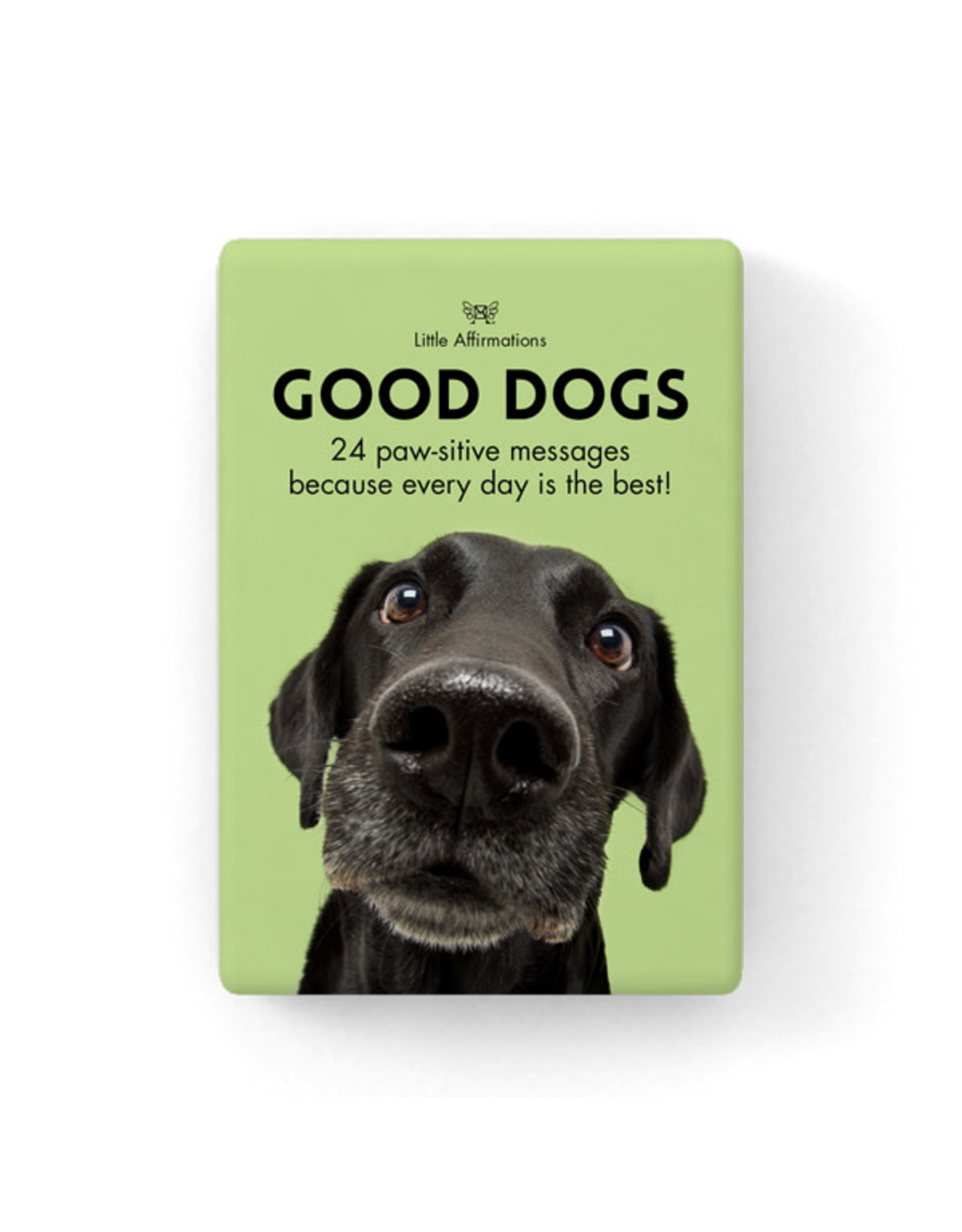 Affirmations Publishing House Little Affirmations - Good Dogs