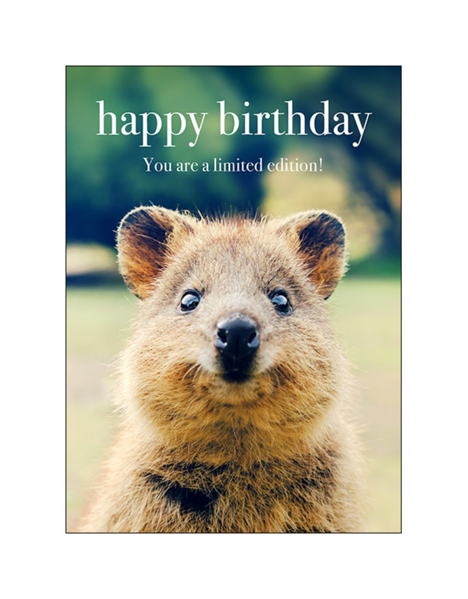 Affirmations Publishing House Greeting Card - Happy Birthday. You are a Limited Edition!