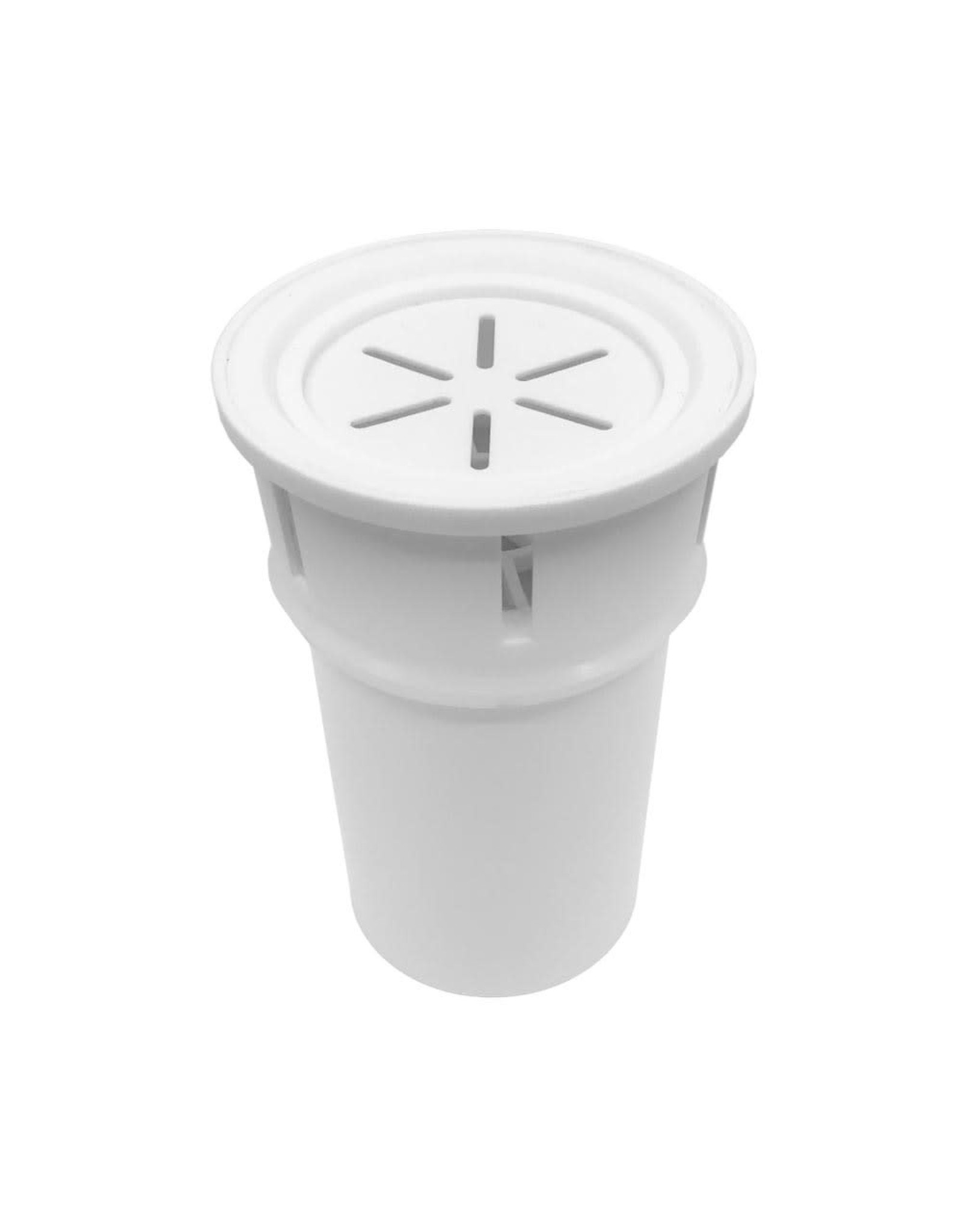 Gentoo Replacement Filter For Ecobud Gentoo