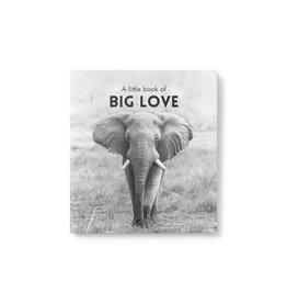 Little Book of Big Love