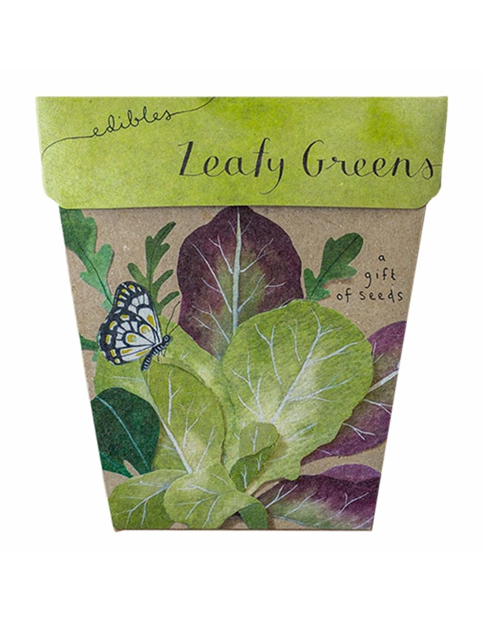 Sow 'N Sow Gift of Seeds - Leafy Greens