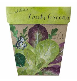 Sow 'N Sow Gift of Seeds - Leafy Greens