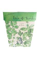 Sow 'N Sow Gift of Seeds - Trio of Herbs