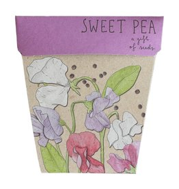 Sow 'N Sow Gift of Seeds - Sweet Pea
