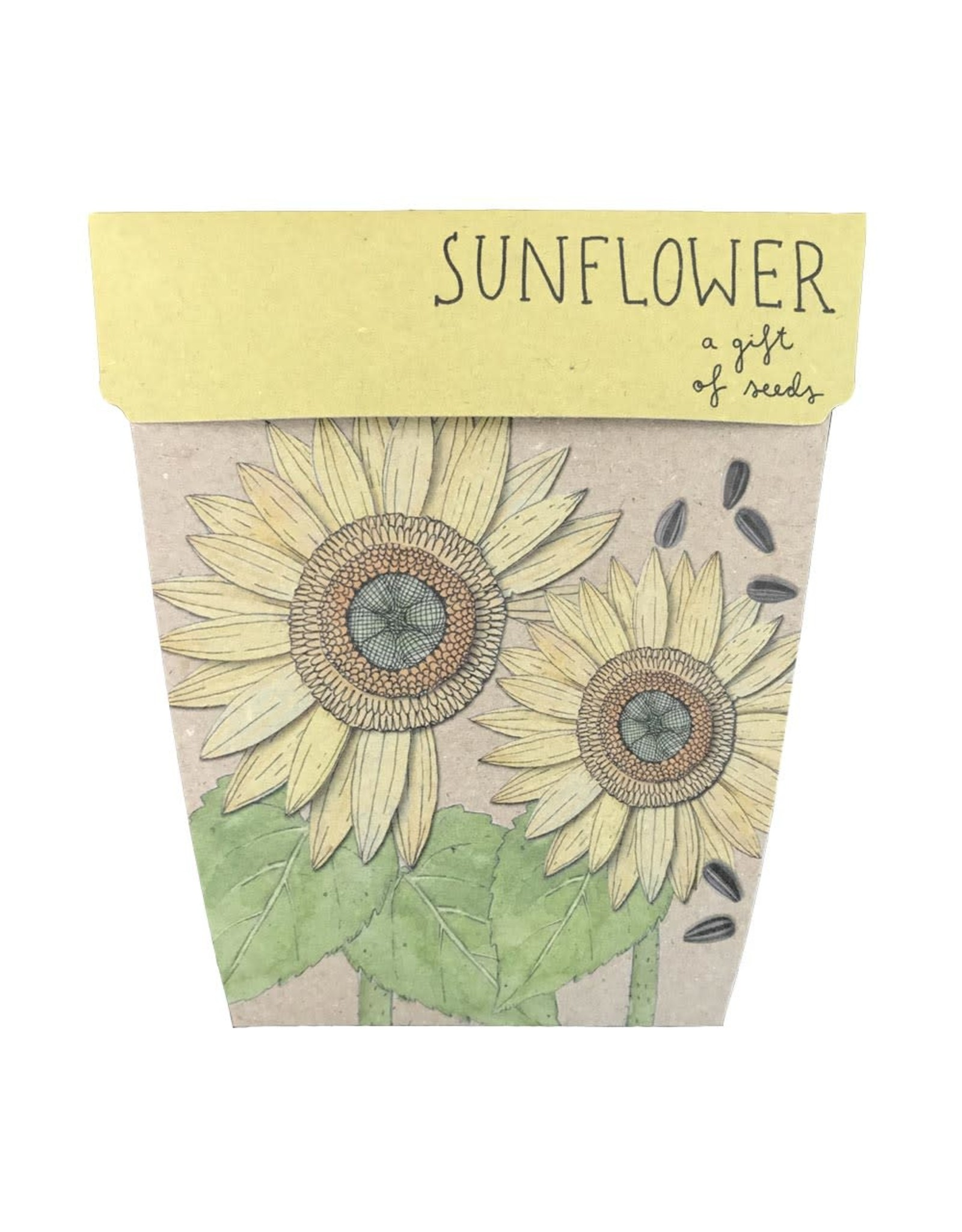 Sow 'N Sow Gift of Seeds - Sunflower