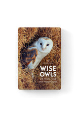 Affirmations Publishing House Little Affirmations - Wise Old Owls