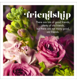 Affirmations Publishing House Greeting Card - Friendship