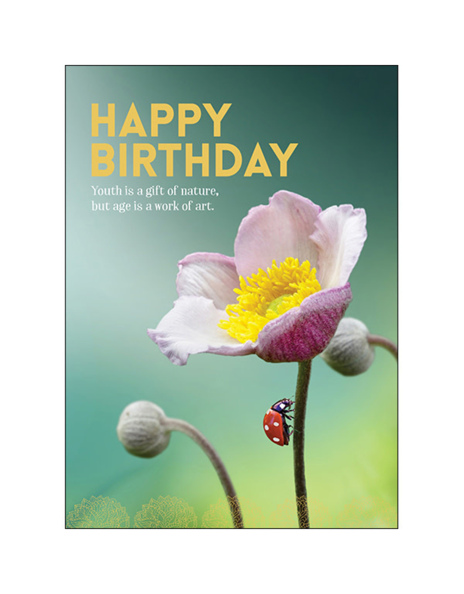 Affirmations Publishing House Greeting Card - Youth is a Gift of Nature