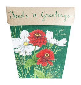 Sow 'N Sow Gift of Seeds - Seeds 'n Greetings