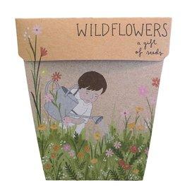 Sow 'N Sow Gift of Seeds - Wildflowers
