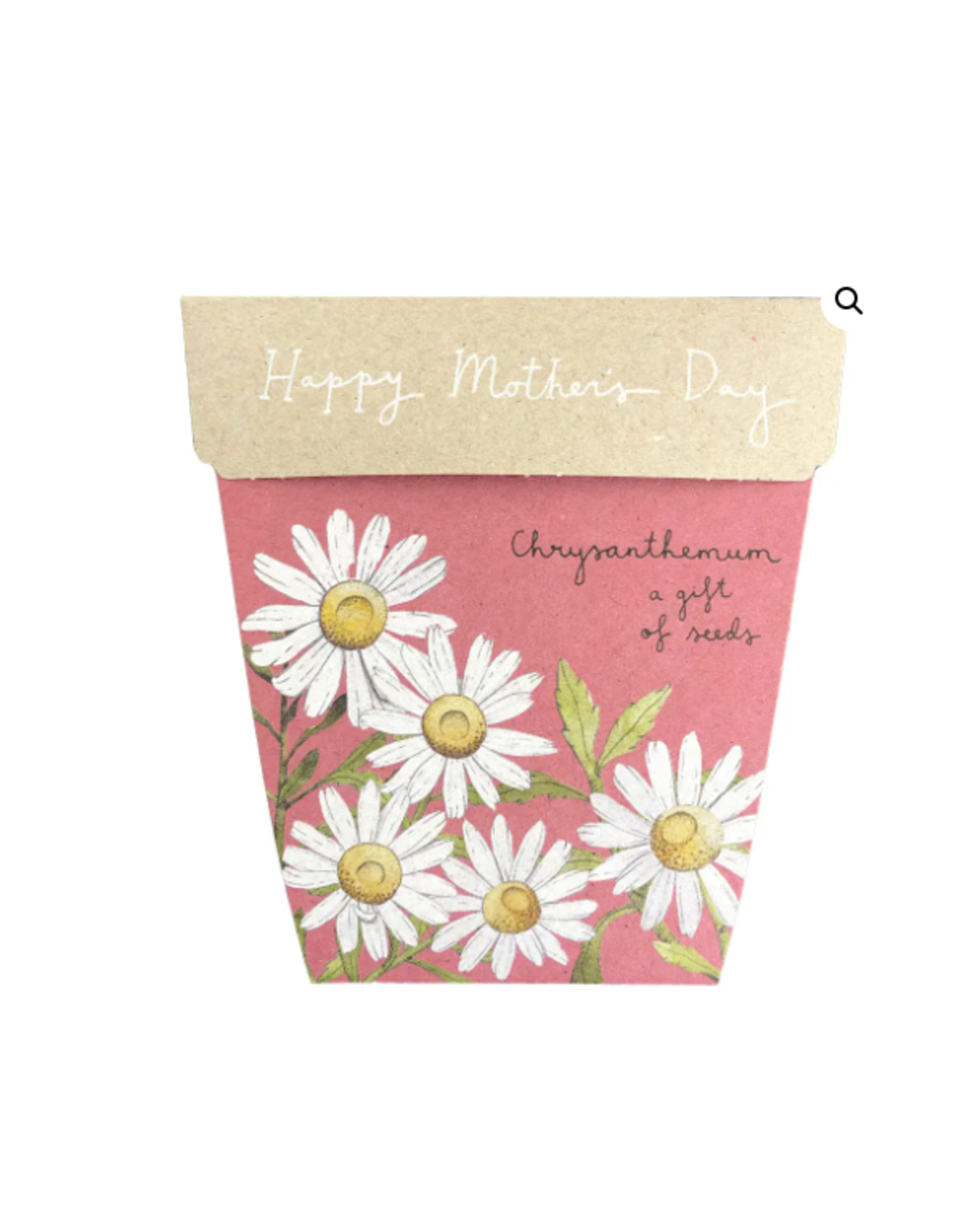 Sow 'N Sow Gift of Seeds Mother's Day Chrysanthemum