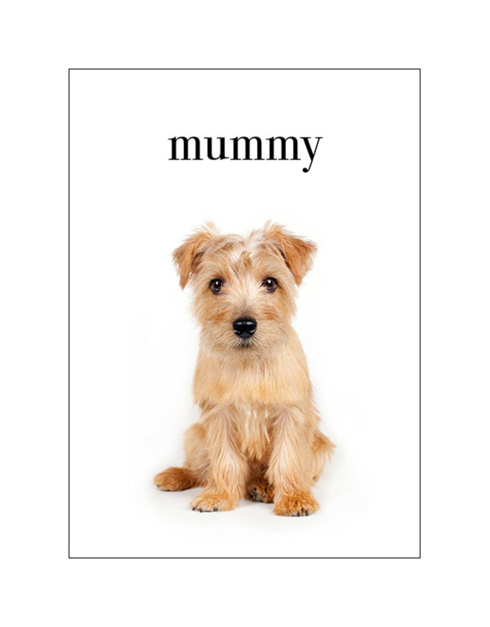 Affirmations Publishing House Mummy, I love You Animal Greeting Card