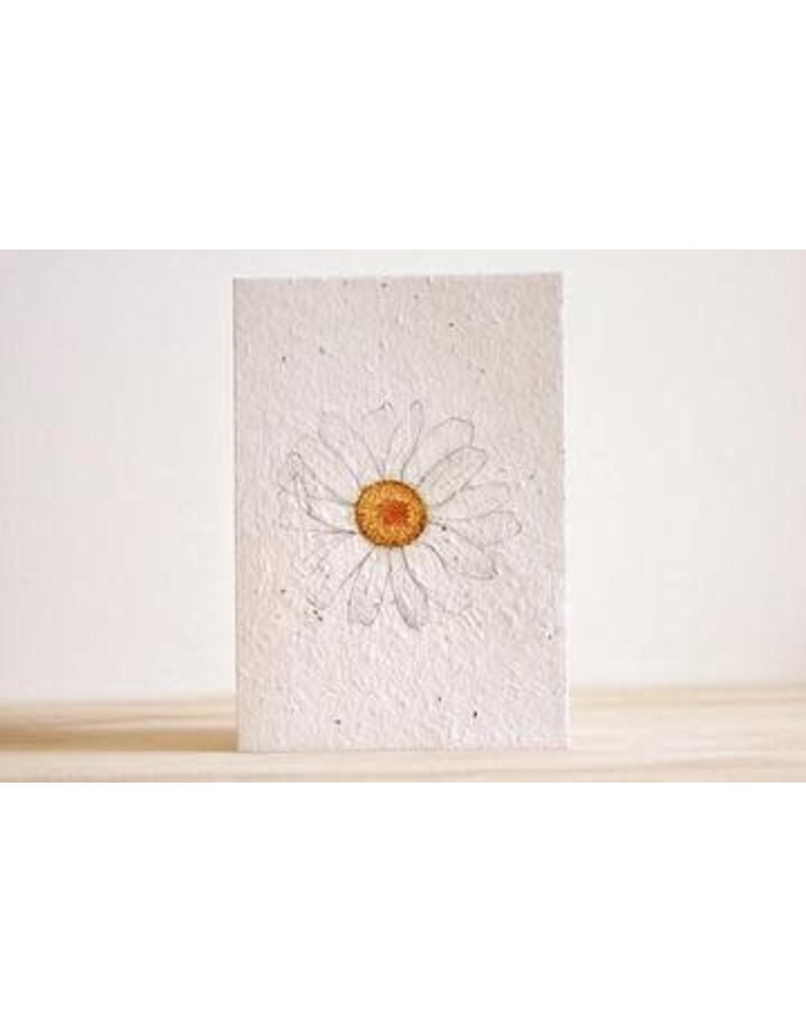 Hello Petal Daisy Daze Blooming Card