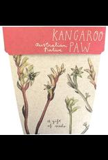Sow 'N Sow Gift of Seeds - Kangaroo Paw