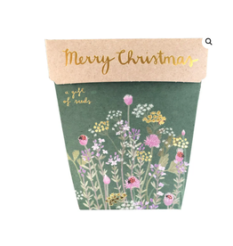 Sow 'N Sow Gift of Seeds Merry Christmas