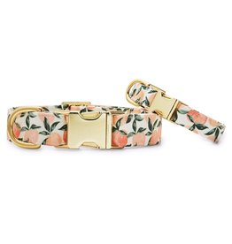 Peaches and Cream Dog Collar