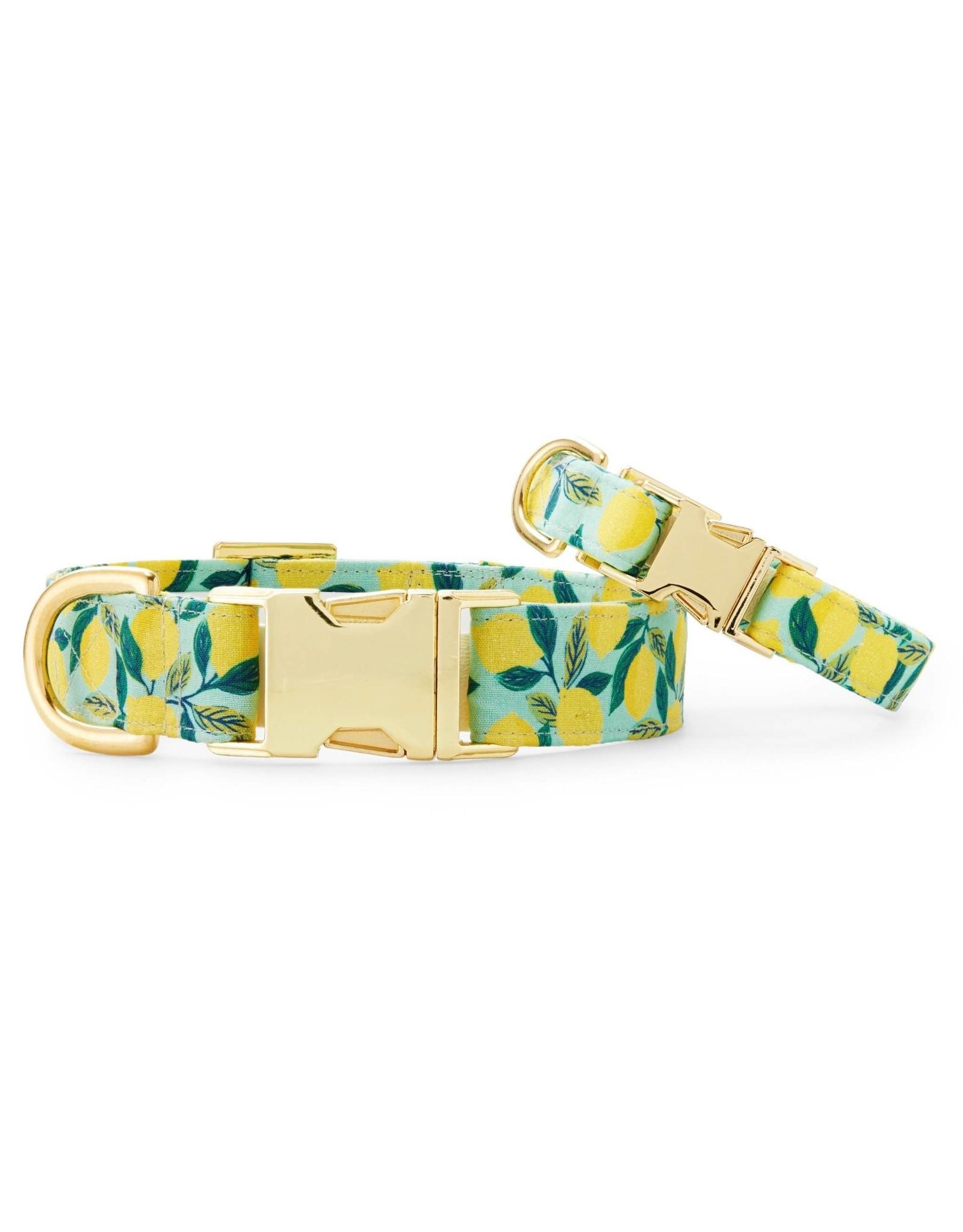 Lemon Zest Dog Collar