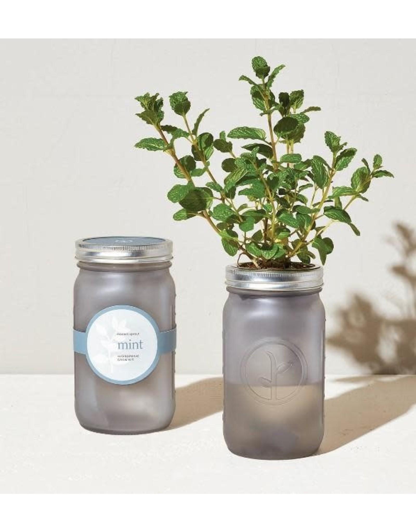 Garden Jar - Mint