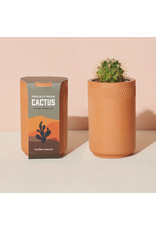 Terracotta Kit - Prickly Pear Cactus