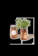 Garden Jar - Parsley