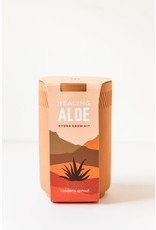 Terracotta Kit - Aloe