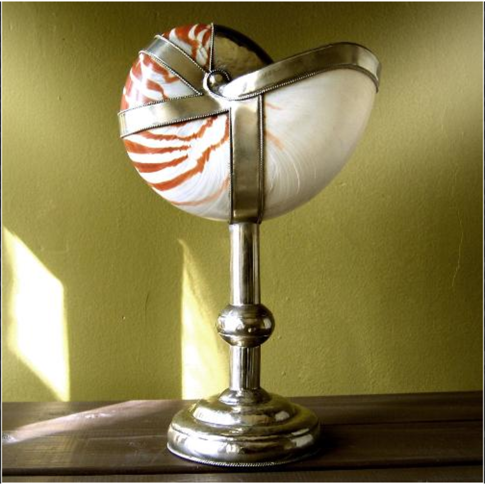 OBJET DE CURIOSITE Nautilus shell dressed up with silver met