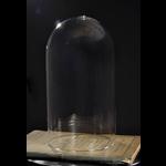 OBJET DE CURIOSITE GLASS GLOBE