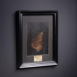 OBJET DE CURIOSITE MAMMOTH HAIR IN BLACK FRAME