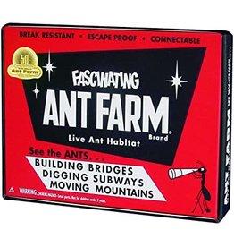 Uncle Milton's Classic Ant Farm