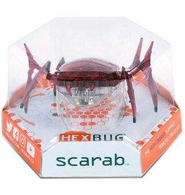 Metallic Beetle & Scarab