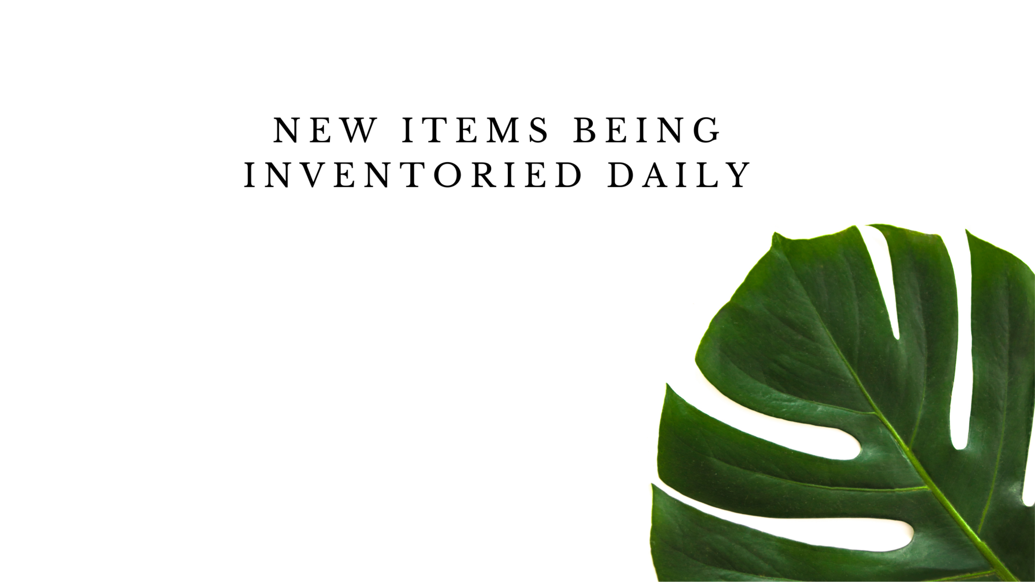 New Items being Inventoried Daily!
