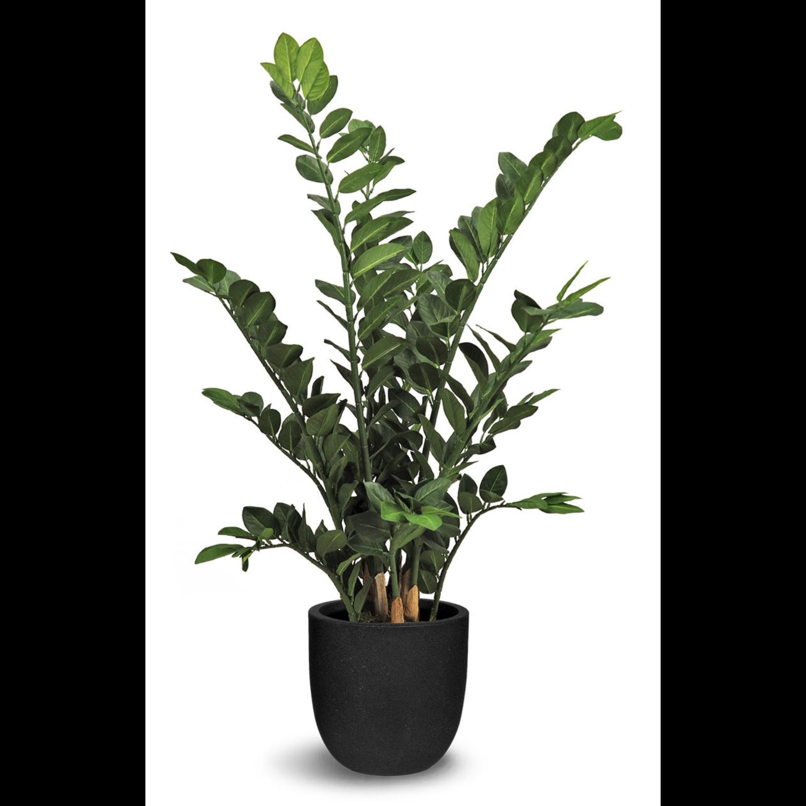 Zamioculcas Faux Plant