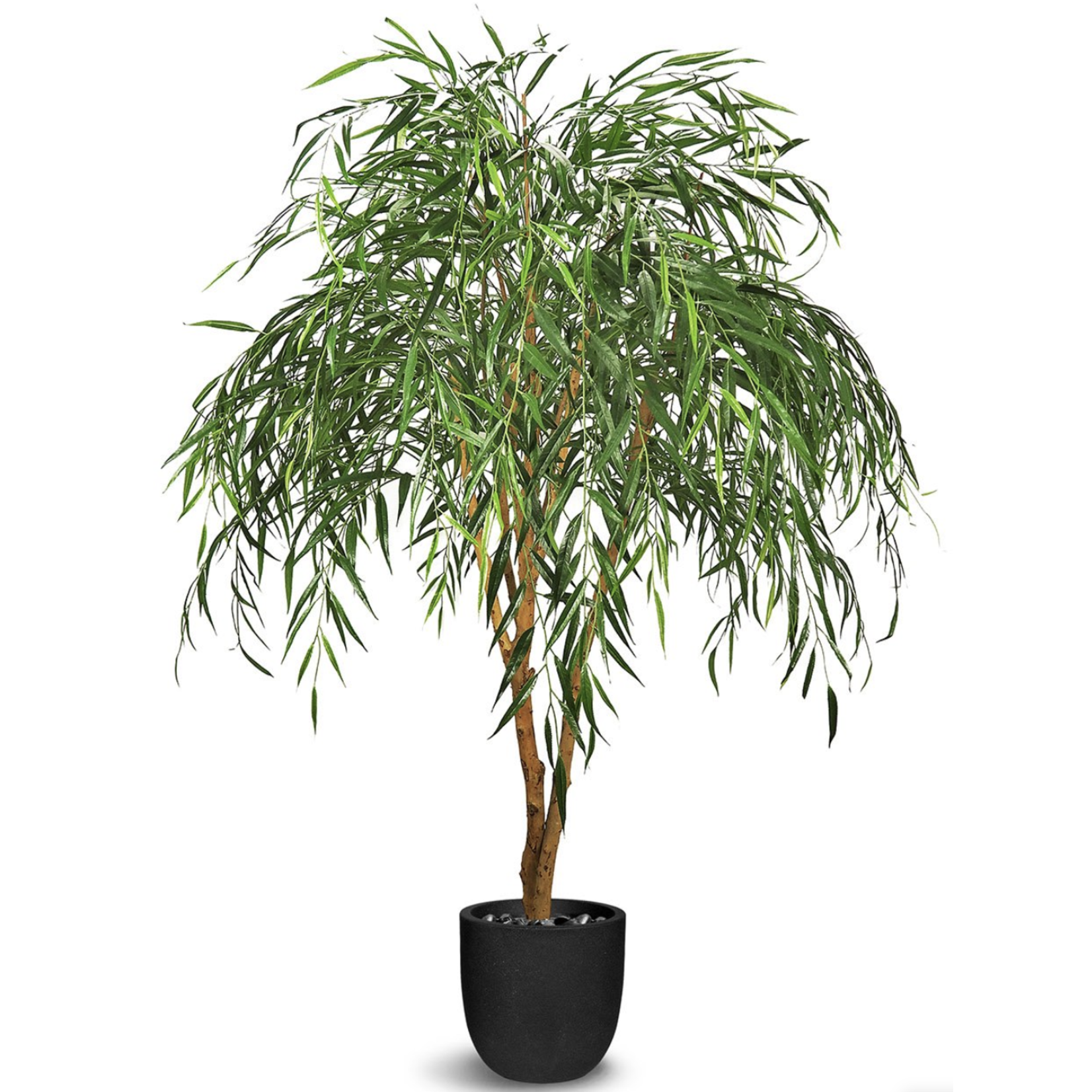 Willow Tree Faux
