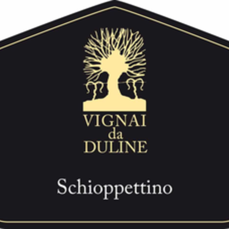 Vignai da Duline Schioppettino 2016
