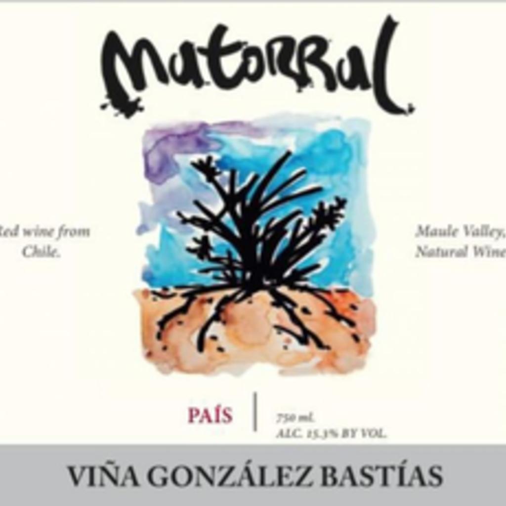 Gonzalez Bastias Matorral 2017