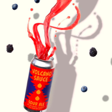 """Aslin Beer Company """"Volcano Sauce"""" Sour Ale 4-Pack"""
