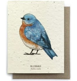 Plantable Seed PaperGreeting Cards