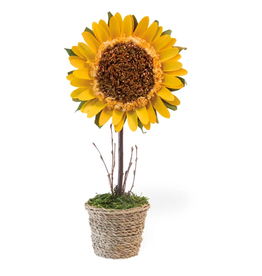 """15"""" Potted Sunflower"""