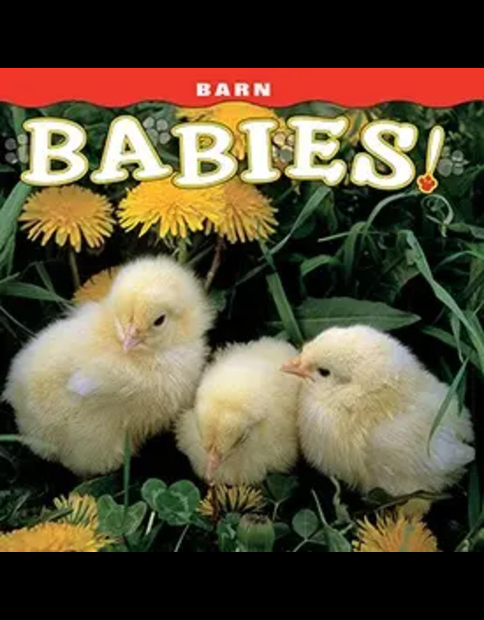 Barn Babies Book