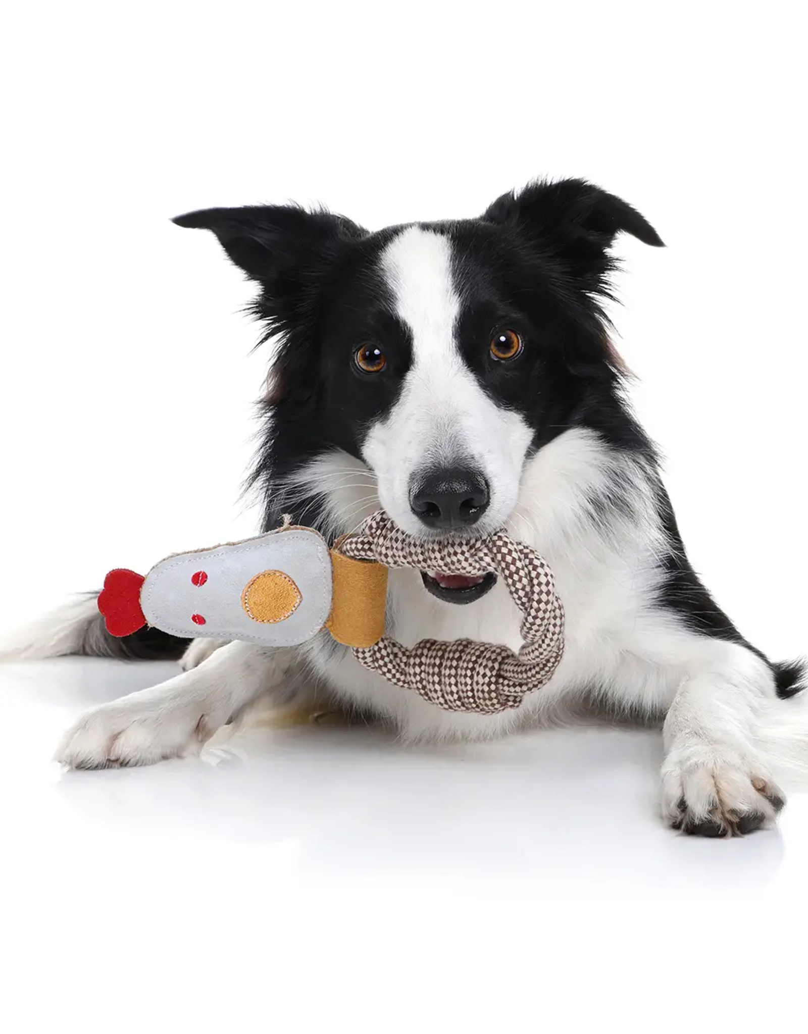 Rope Dog Toy - Pig