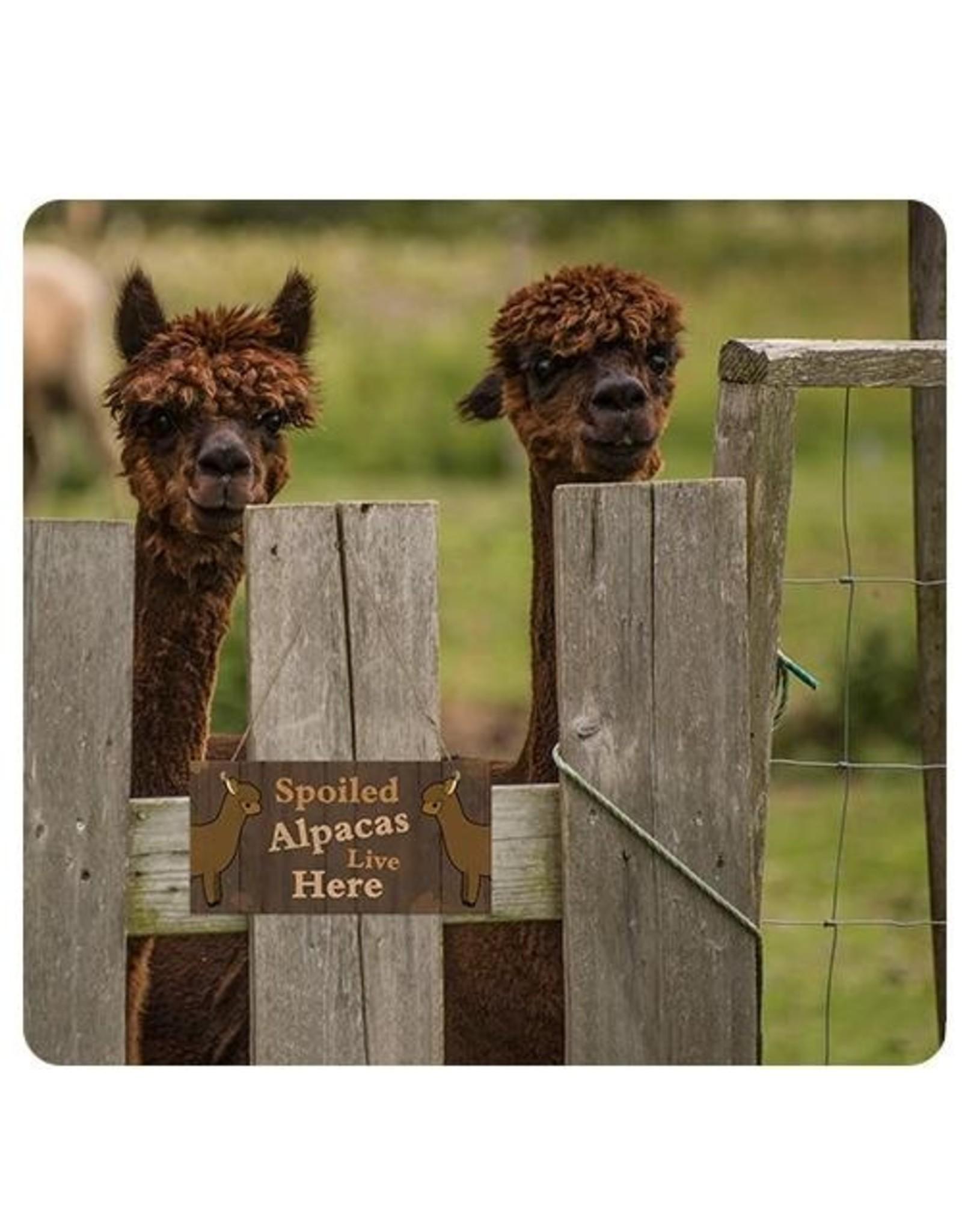 Wooden Plaque (Brown)-Spoiled Alpacas Live Here
