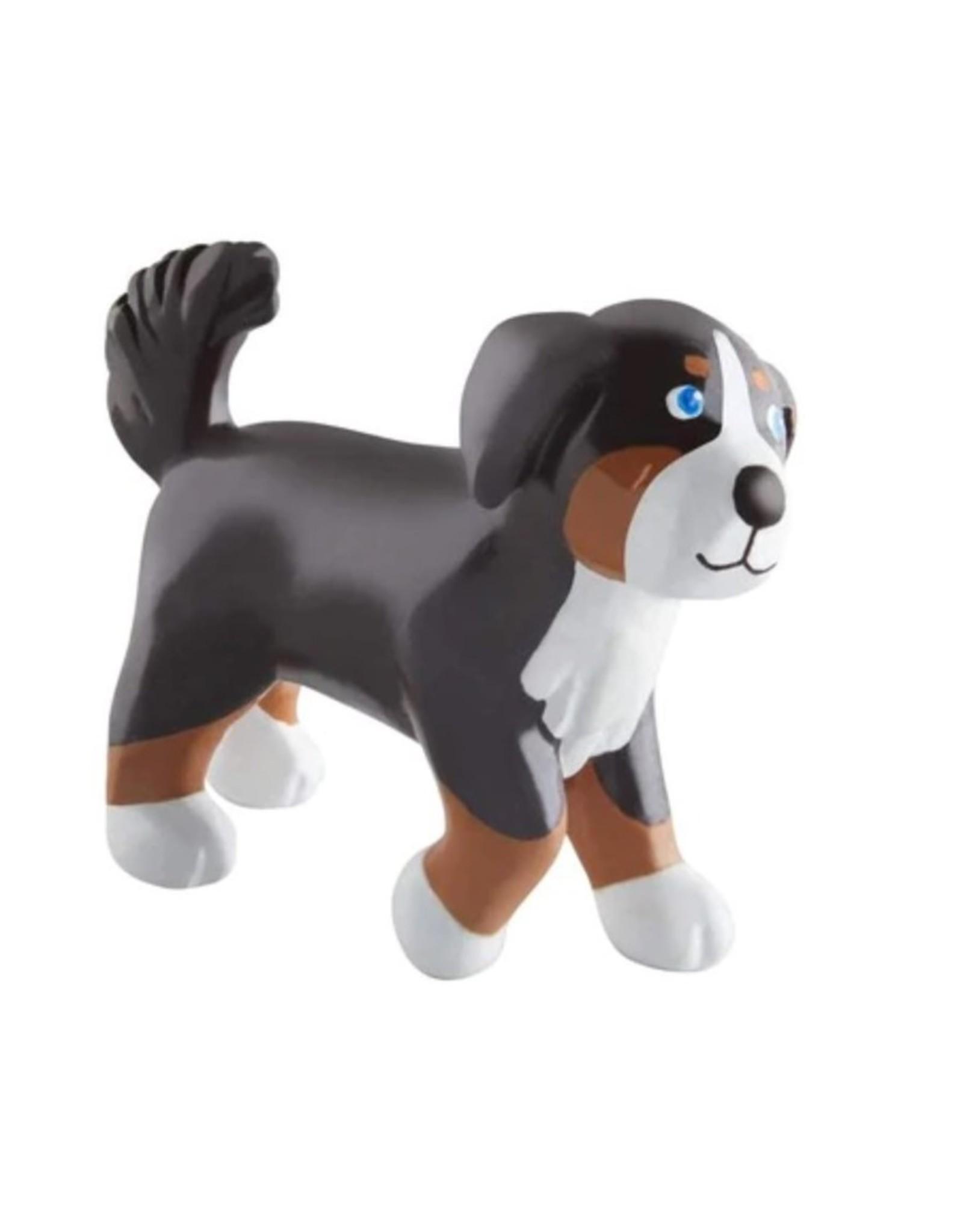 Little Friends - Leika the Bernese Mountain Dog