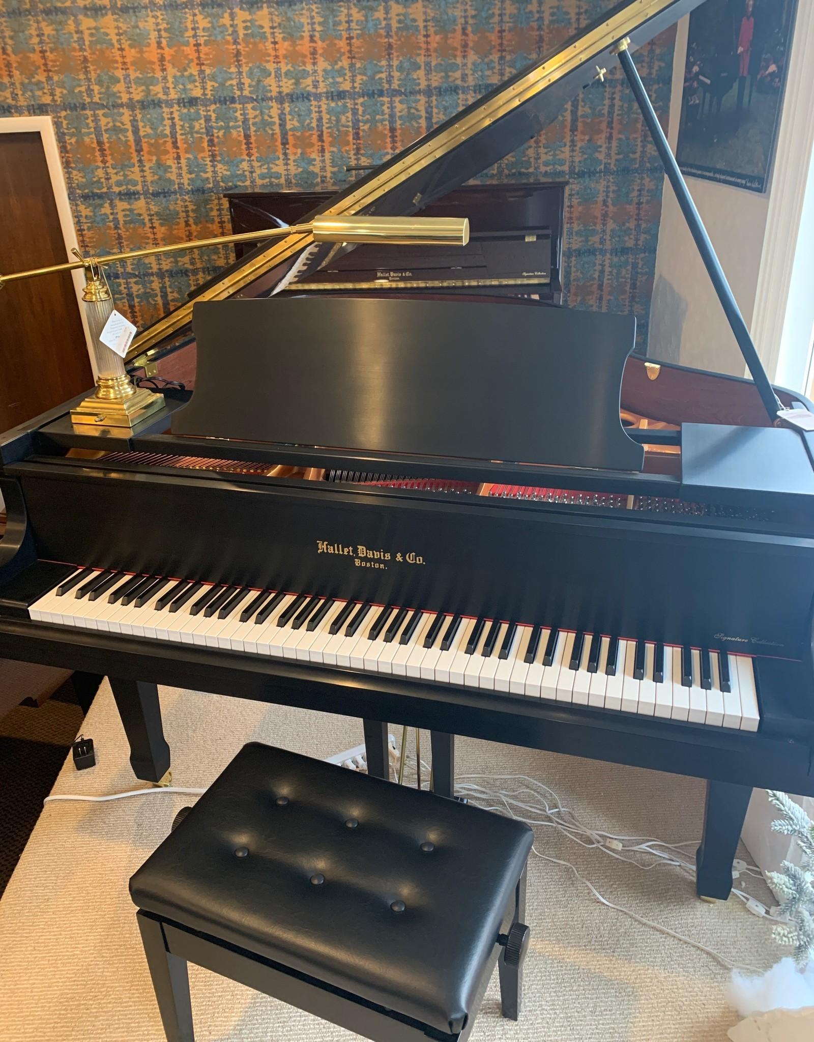 "Hallet Davis & Co. Hallet, Davis and Co. HS160 5'3"" Elite Grand Piano (Satin Ebony with Mahogony Inner Rim)"